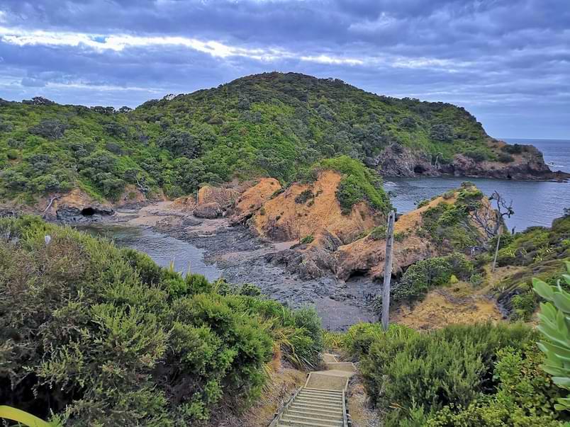 Tutukaka Lighthouse Walk near Whangarei