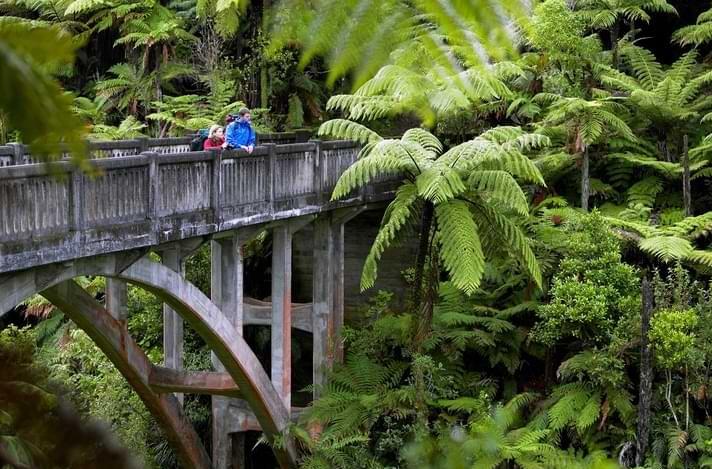 Whanganui River Journey Bridge