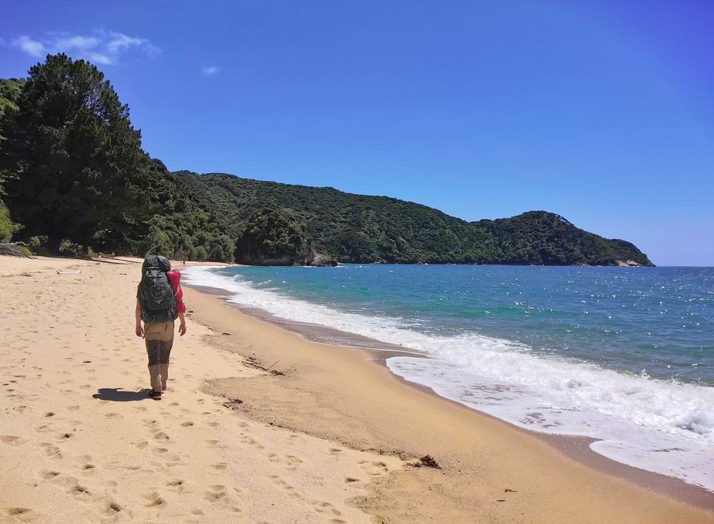 Whariwharangi Bay Abel Tasman Coast Track